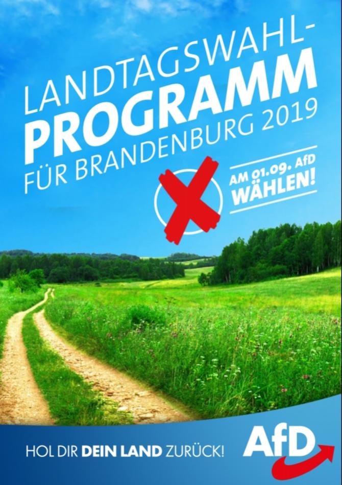 Direktkandidaten zur Landtagswahl 2019